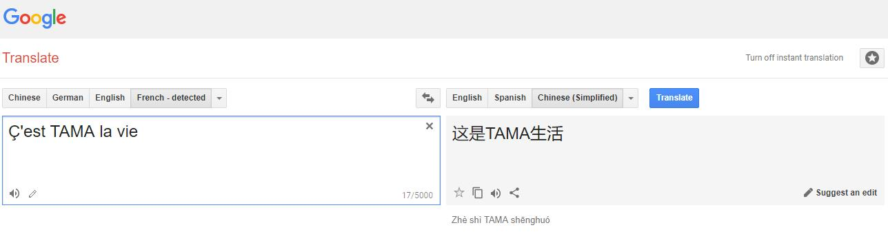 cest-tama-la-vie-translate